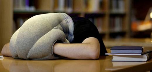 ostrich pillow straußenkissen