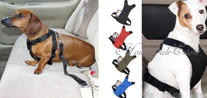 autogurt hund autofahren sicherheitsgurt hundegurt auto